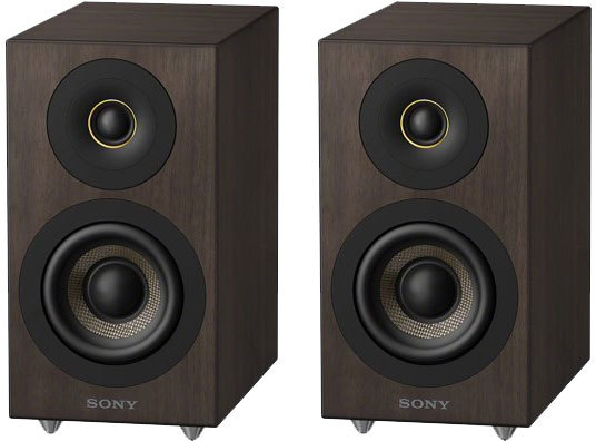 sony cas 1 bluetooth lautsprecher tests erfahrungen im. Black Bedroom Furniture Sets. Home Design Ideas