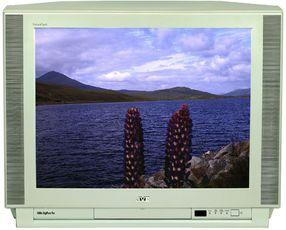 Produktfoto JVC AV 29 A 10
