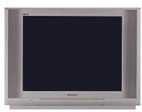 Produktfoto Panasonic TX 25 PX 10D