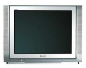Produktfoto Panasonic TX 29 PM 1