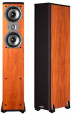 Produktfoto Polk Audio TSI300
