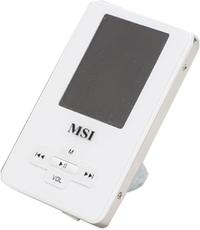 Produktfoto MSI P 500
