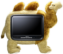 Produktfoto Hannspree Hannscamel 19.TV