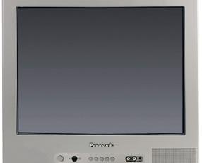 Produktfoto Panasonic TX 21JT 1 C