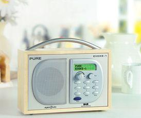 Produktfoto Pure Evoke 1